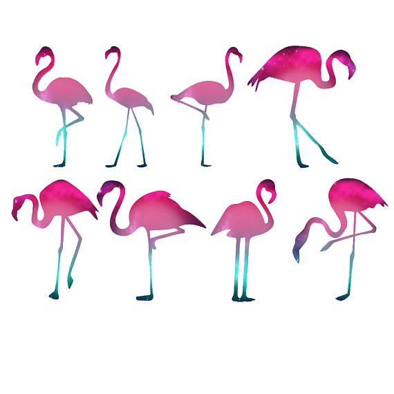 570x570 Flamingos Clipart Gold Foil Flamingos Rose Gold Foil Clip Free