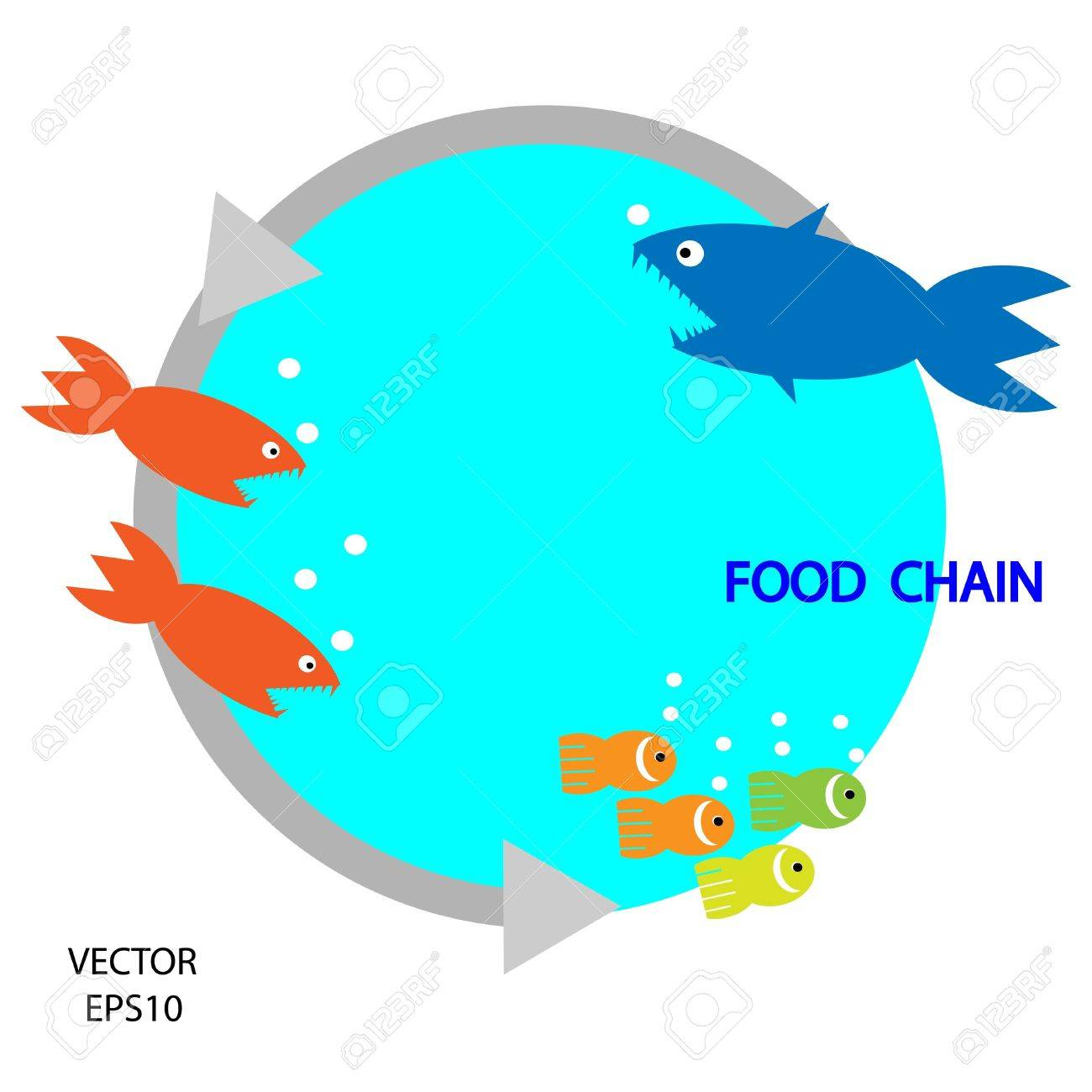 1300x1300 Food Chain, A Small Fish Is Food For Big Fish,metaphorical,vector