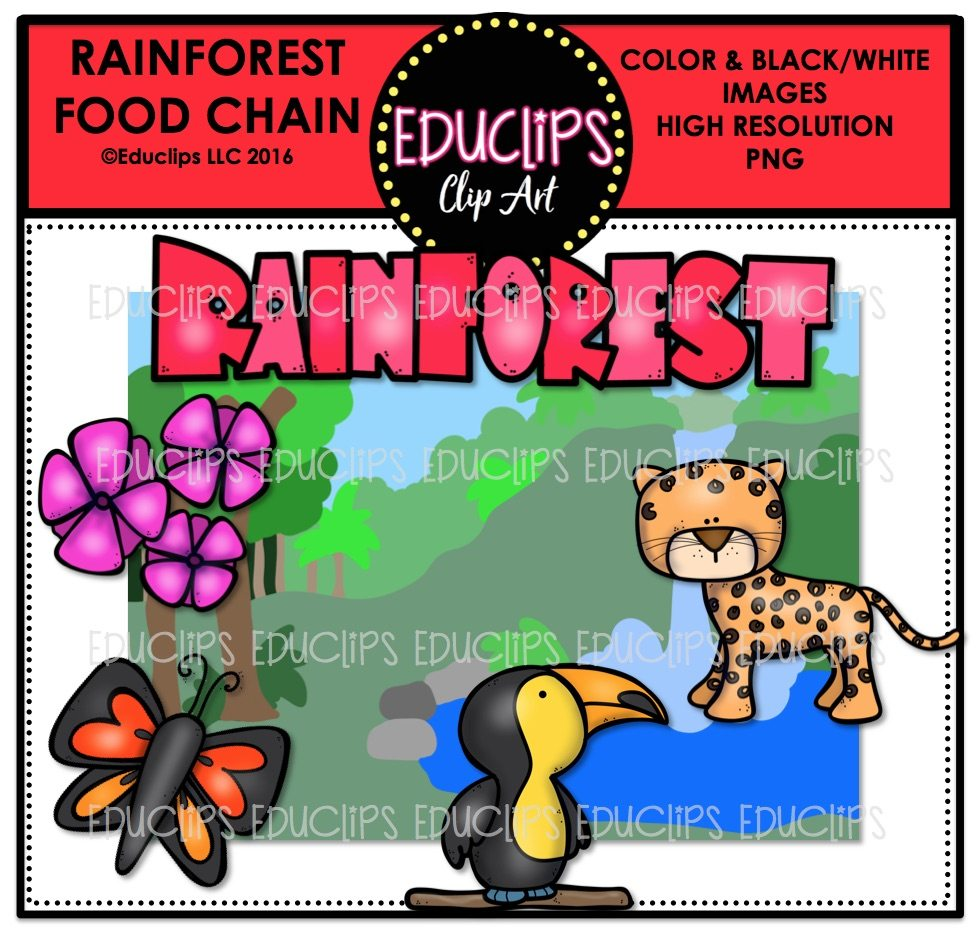 980x936 Rainforest Food Chain Clip Art Mini Bundle (Color And Bampw