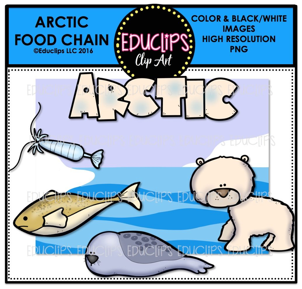1035x990 Arctic Food Chain Clip Art Mini Bundle (Color And Bampw)