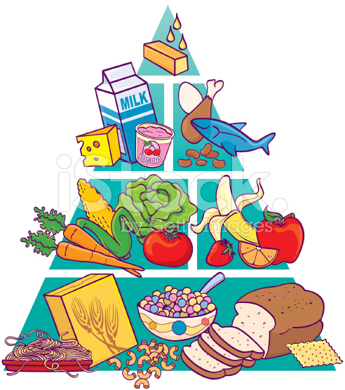 492x556 Food Pyramid Clip Art