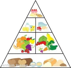 300x289 Food Pyramid Clipart Many Interesting Cliparts