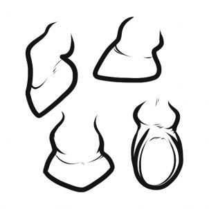 302x302 Horse Hoof Clip Art Free Clipart