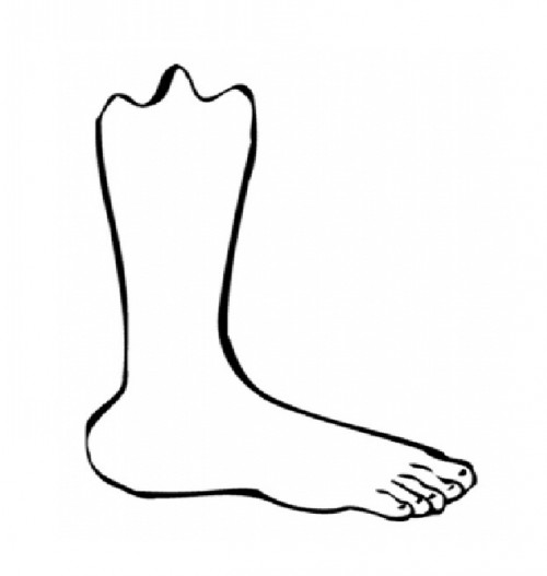 Foot Coloring Page Clipart | Free download on ClipArtMag