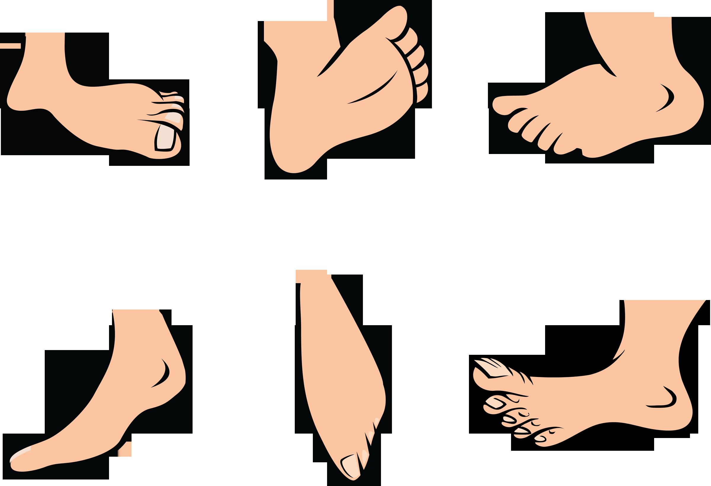 2400x1641 Big Foot Clipart Wiggle