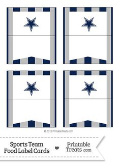 236x324 Dallas Cowboys Pennant Banner Flag