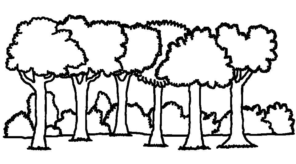 962x535 Forest clipart b w