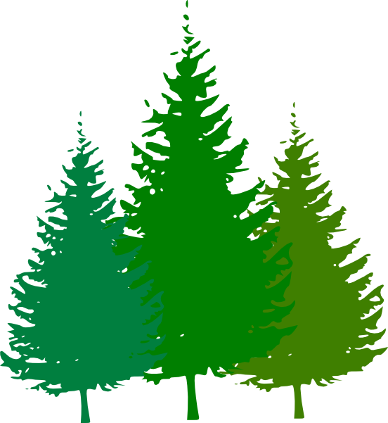 552x601 Forest Clipart