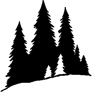 300x300 Pine Tree clipart tree silhouette
