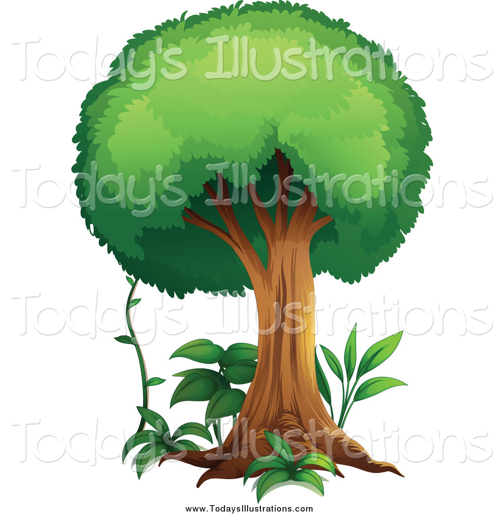 1024x1044 Clipart Of A Forest Tree With Plants And A Vine By Graphics Rf