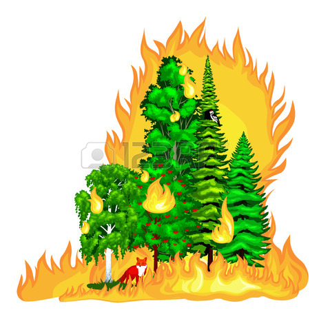 450x450 Forest Fire, Fire In Forest Landscape Damage, Nature Ecology