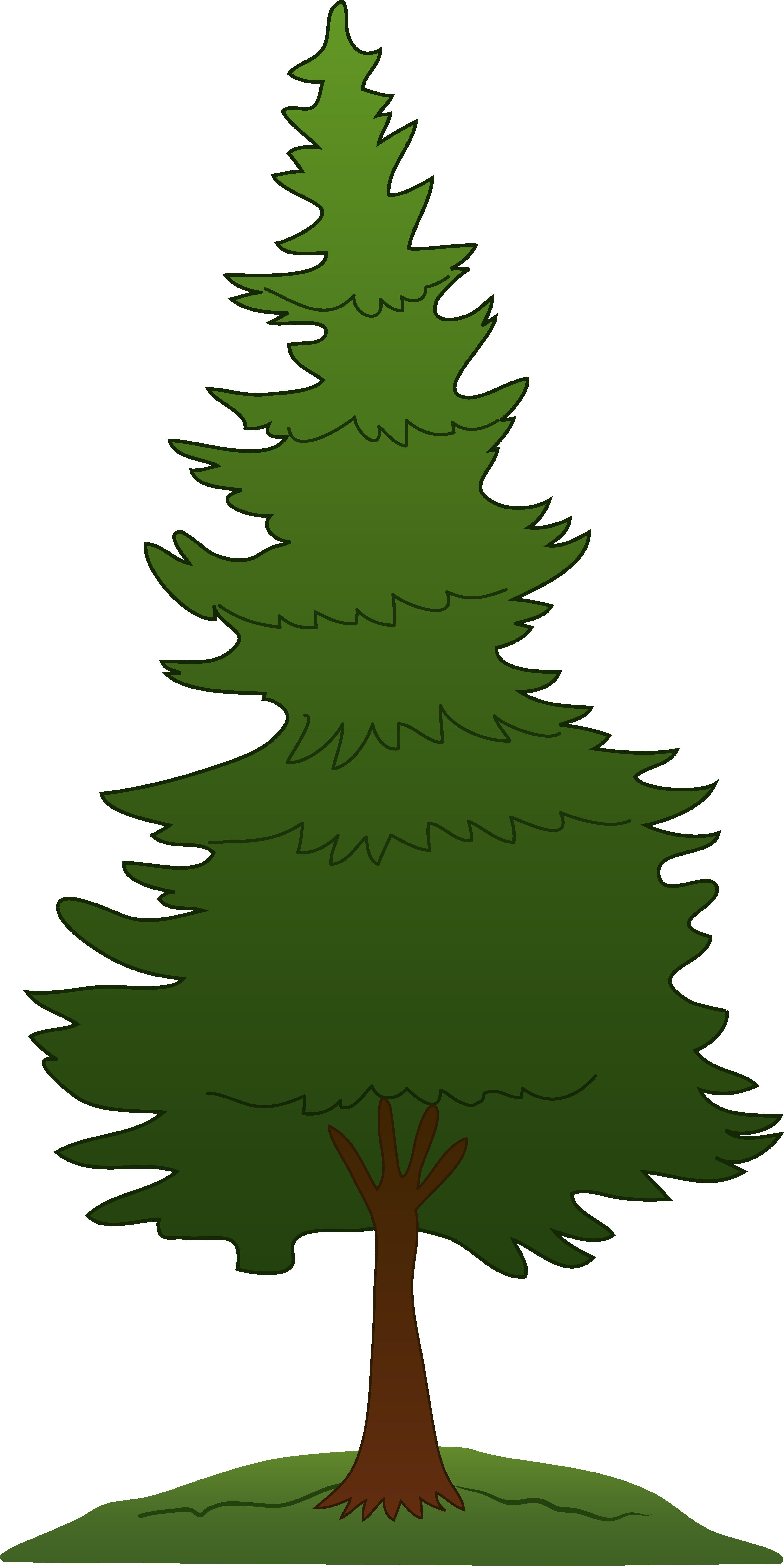 3256x6498 Green Pine Tree Design