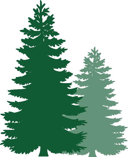 486x595 Pine Trees Clip Art
