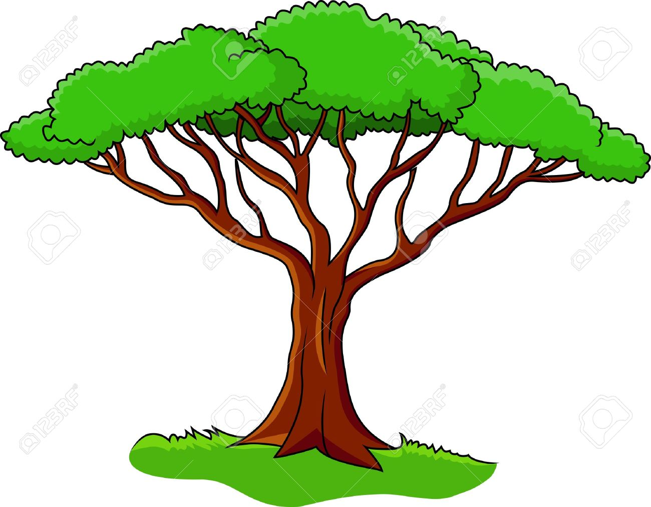1300x1011 Bush Clipart Forest Tree