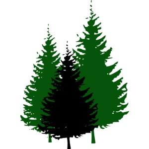 300x300 Tree Clipart Forest Tree