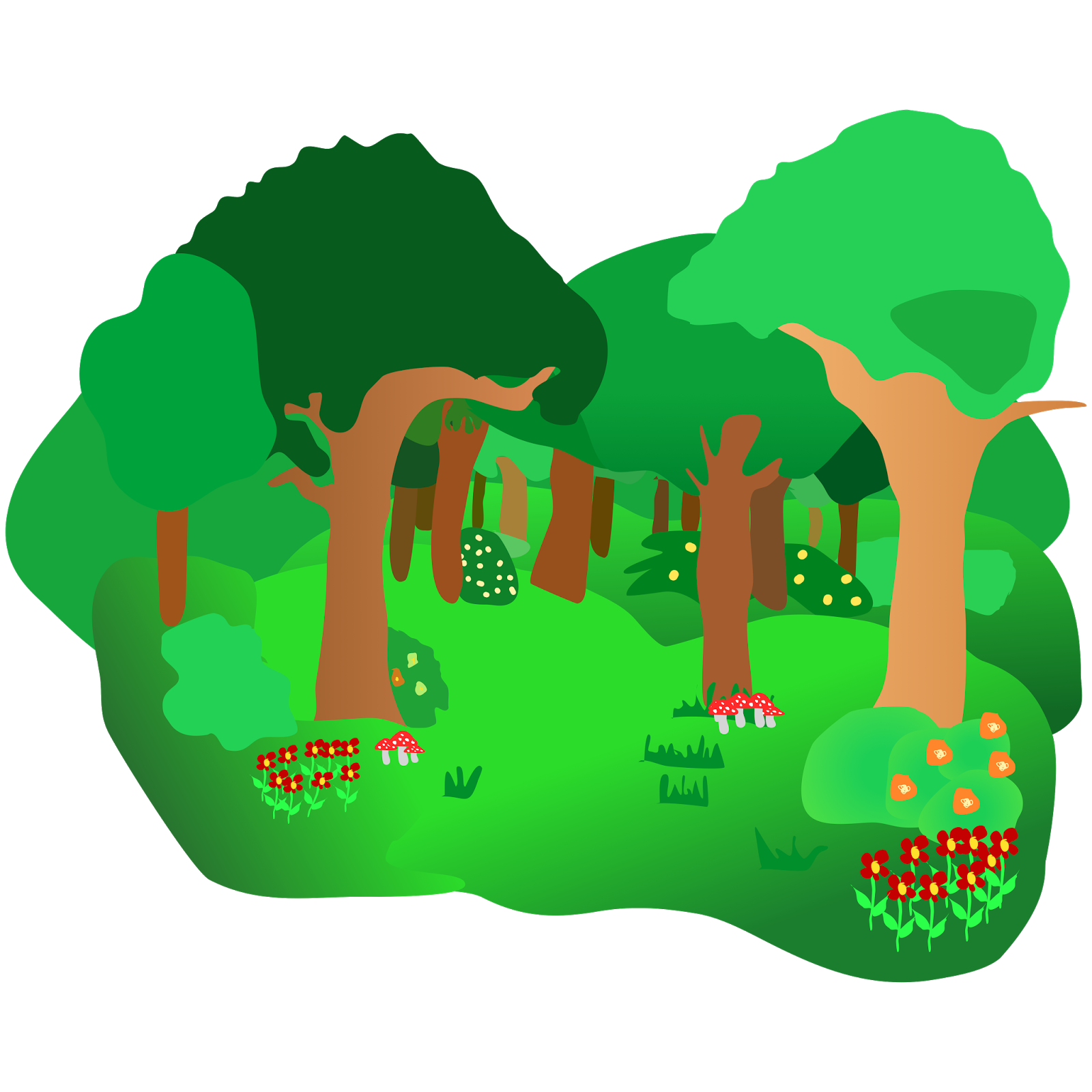 1600x1600 Forest Clipart Forest Ecosystem