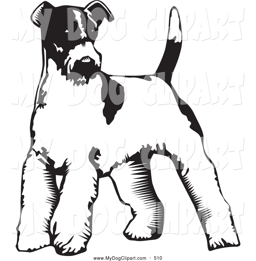 1024x1044 Clip Art Of A Cute Wire Fox Terrier Dog Standing On A White
