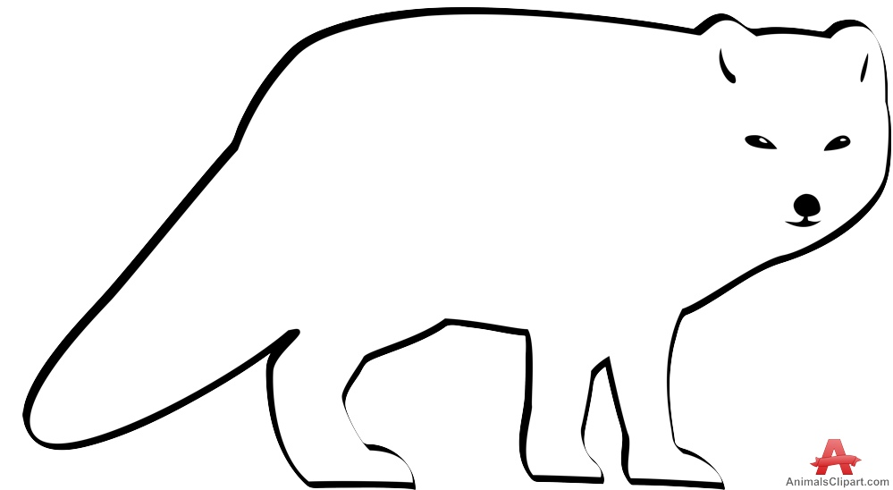 999x548 Arctic Fox Clipart Actic