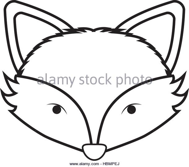 610x540 Fox Face Stock Vector Images