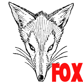 338x338 How To Draw Foxes Heads Easy Step By Step Drawing Tutorial