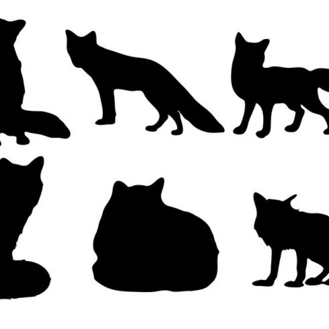 650x650 Free Vector Free Fox Silhouette Vector