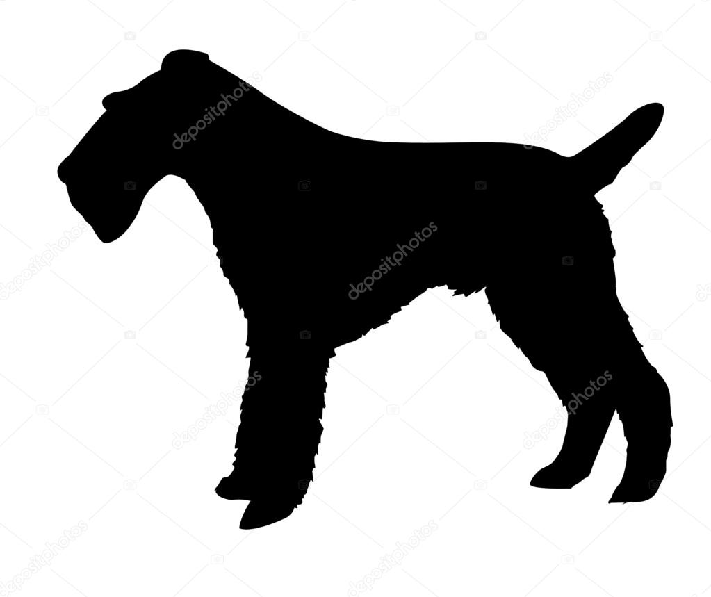 1023x859 Silhouette of the fox terrier — Stock Photo © basel101658