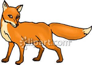 300x210 Fox Clip Art Fox Clipart