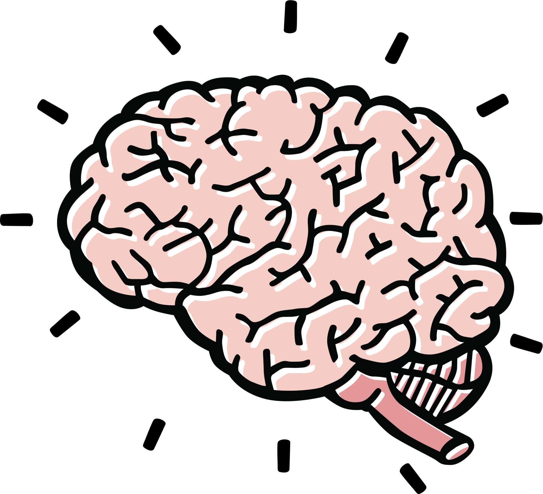 1817x1653 Animated Brain Clipart