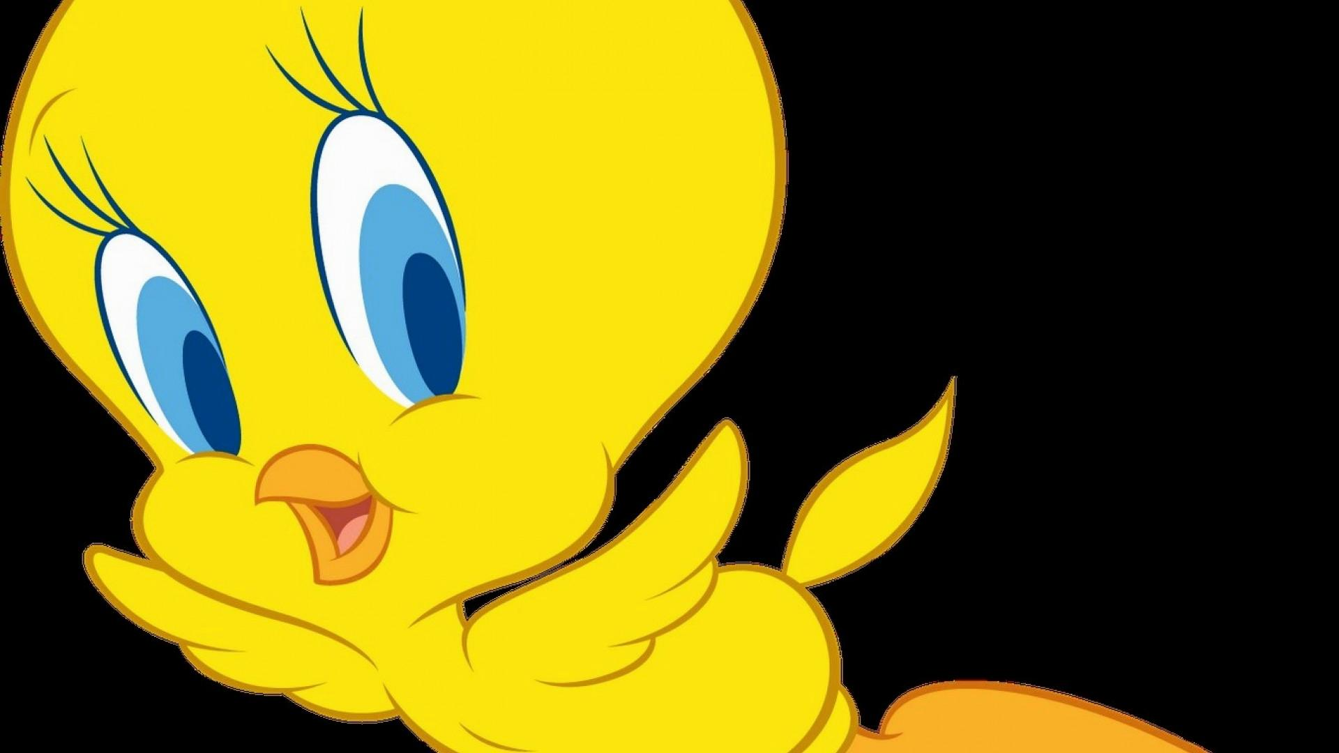 1920x1080 Tweety Hd Images Get Free Top Quality Tweety Hd Images For Your