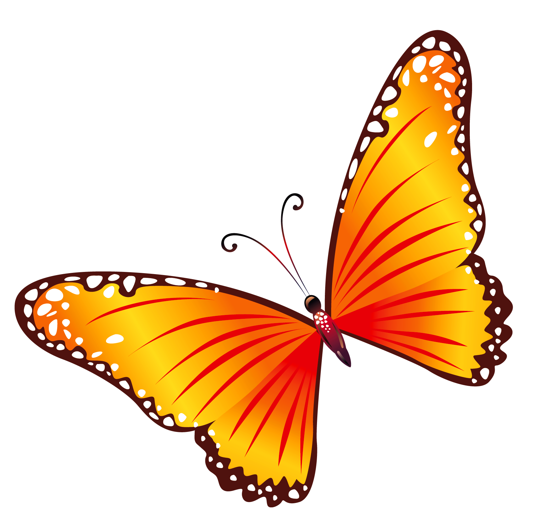 1717x1686 Animated Butterfly Clipart Free
