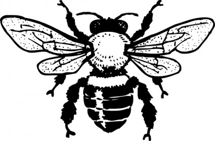 425x279 Bee Clipart Black And White Clipart Panda