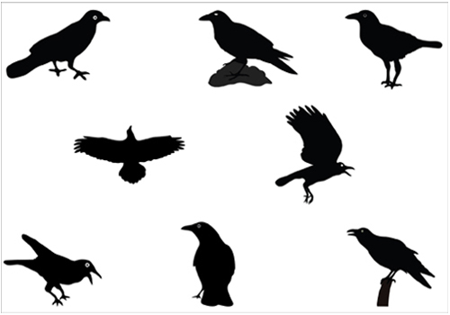 500x350 Birds Vector Graphics Archives Silhouette Clip Artsilhouette