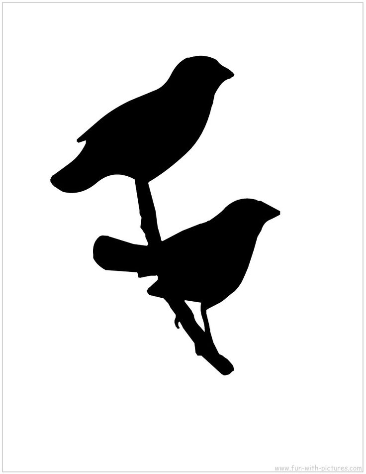 736x952 22 Best Birds And Silhouettes Images Spring, Black