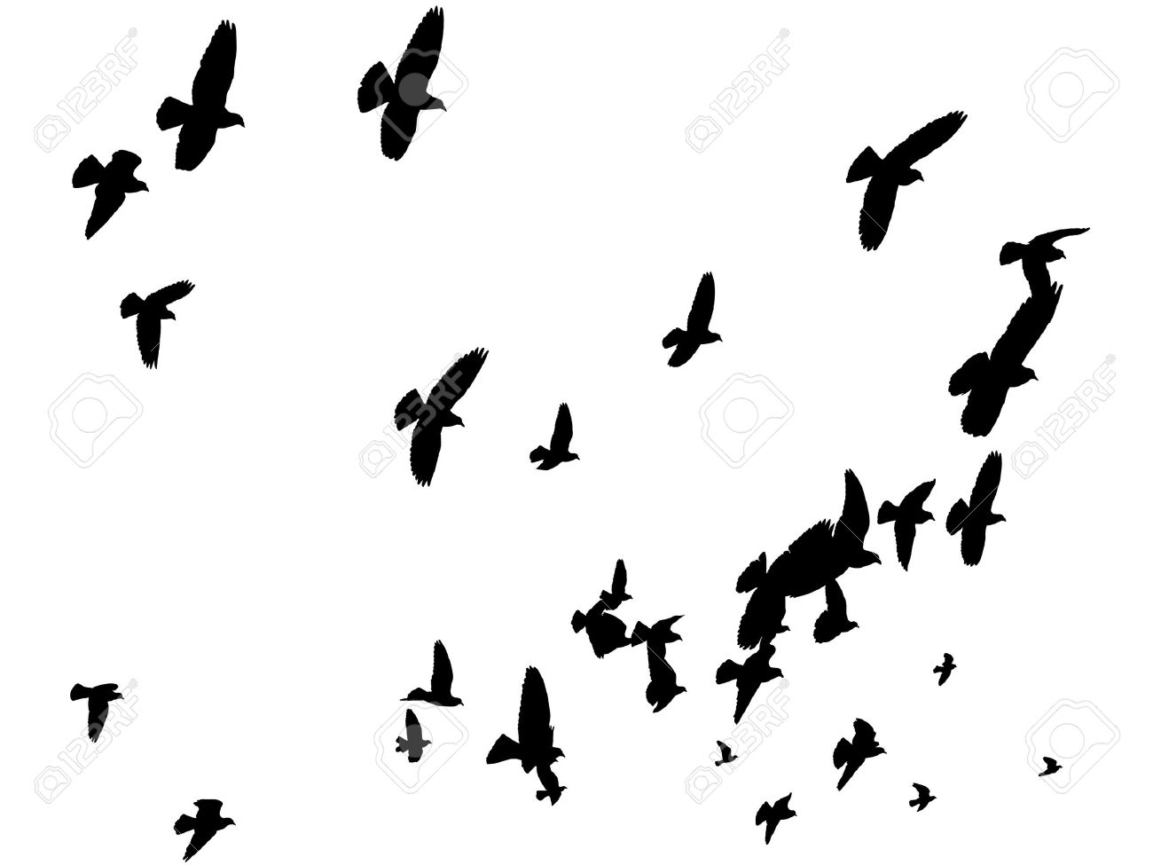 1300x975 Dove Clipart Free Bird