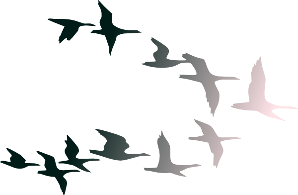 600x392 Dove Clipart Free Bird