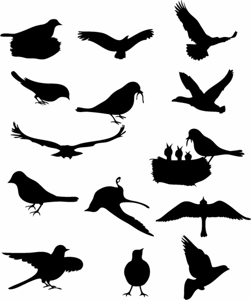 502x600 Flock Of Birds Clipart Couple Bird
