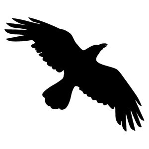 300x300 Flying Bird Silhouette Clipart