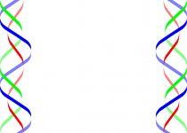 210x150 Clip Art Birthday Clip Art Borders