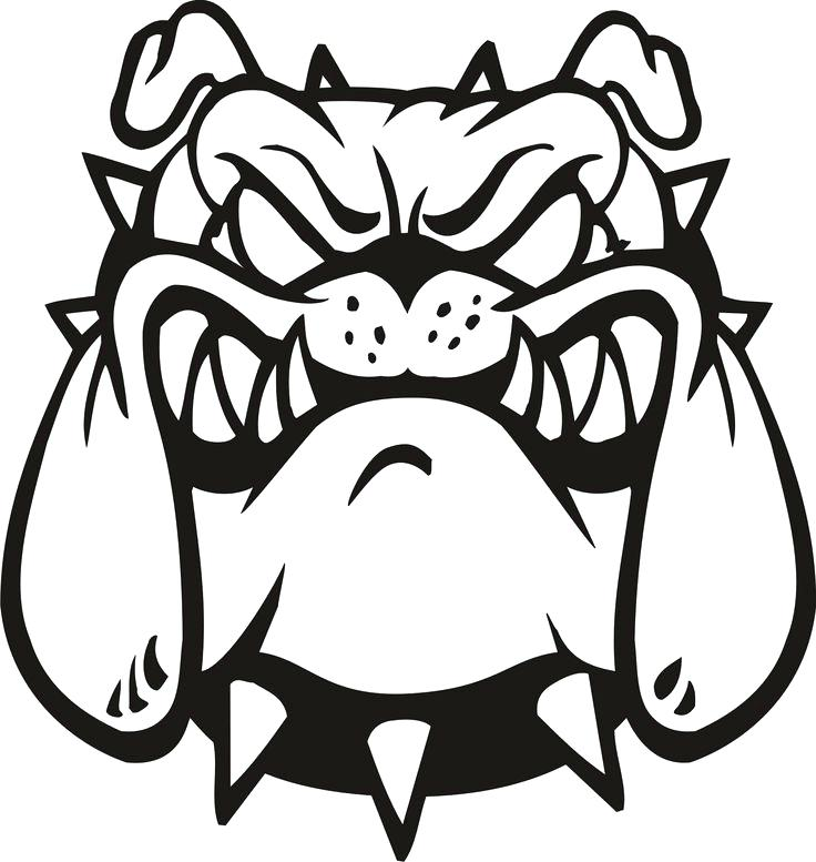 736x777 Bulldog Mascot Clipart Lady Bulldog Mascot Vector Of A Cartoon