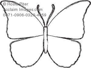 300x225 White Butterfly Coloring Page Royalty Free Clip Art Picture