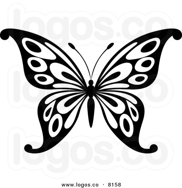 600x620 Butterfly Graphics Clipart Black White