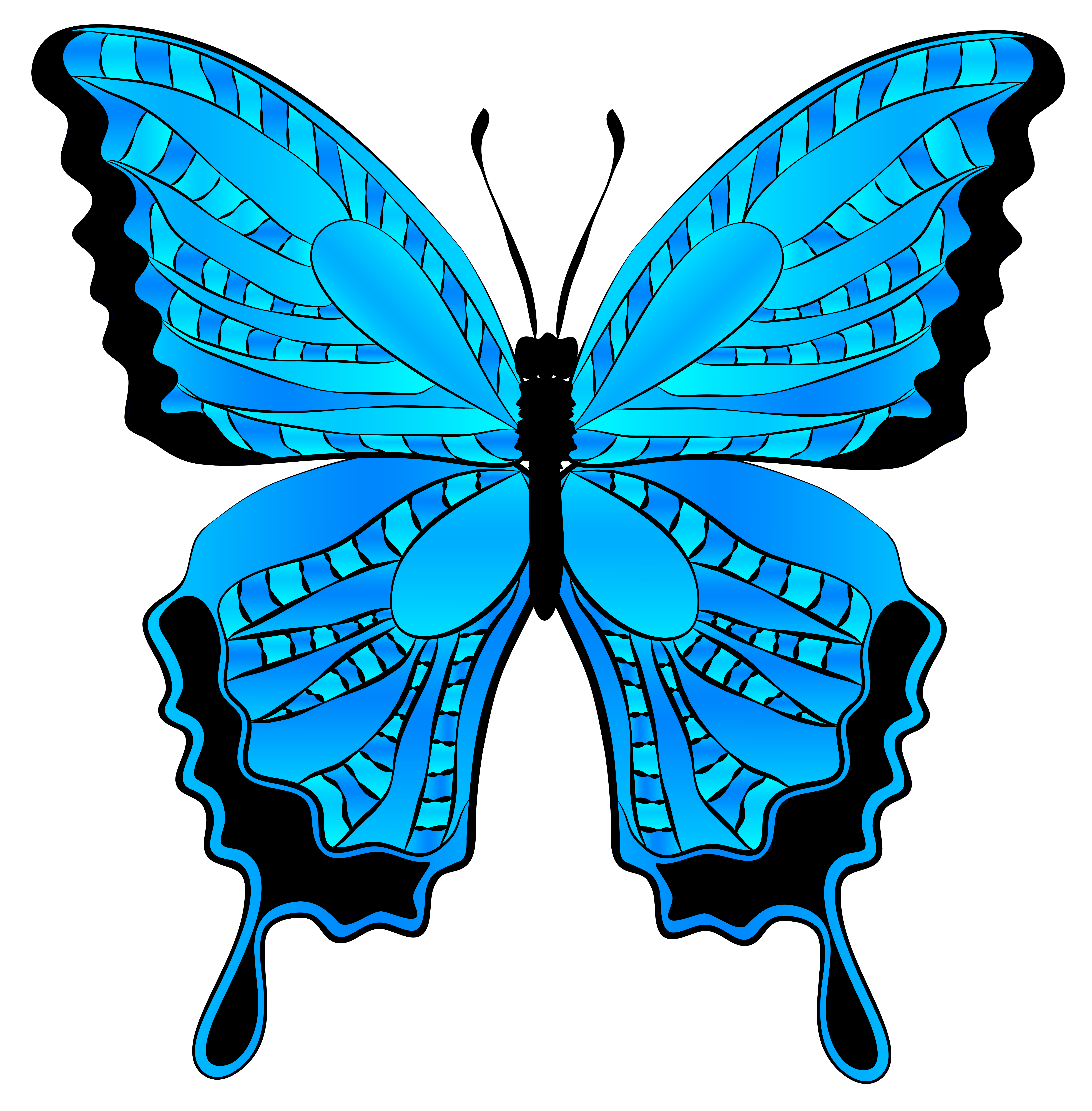 6117x6224 Free Butterfly Clip Art Graphics Free Clipart Images