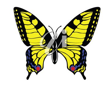 350x279 Picture Of Yellow Butterfly With Flynd Red Markings In