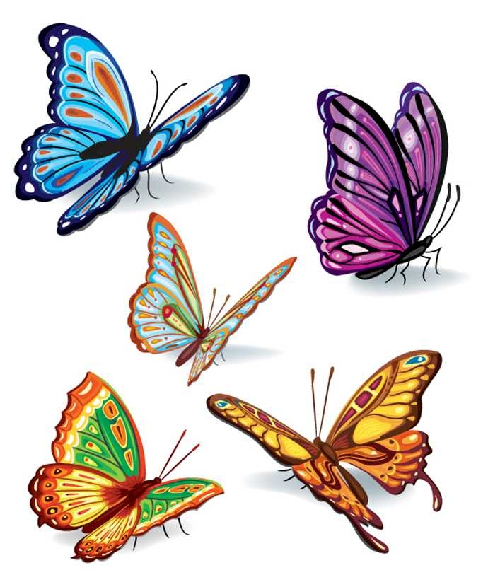 690x830 Butterfly Vector Free Download Free Download Clip Art Free