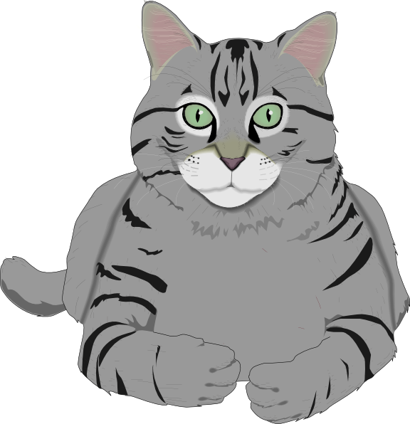 576x596 Cat Clip Art Pictures Free Clipart Images