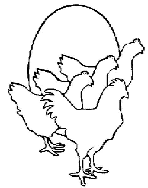 472x600 Chicken Line Art