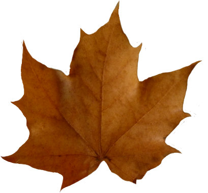 409x379 Fall Leaves Border Clipart Free Clipart Images 2