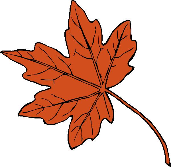 600x585 Maple Leaf Clip Art