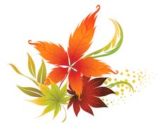 236x188 Transparent Fall Leaves Decor Picture Backgrounds, Borders