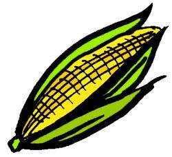 Free Clipart Corn